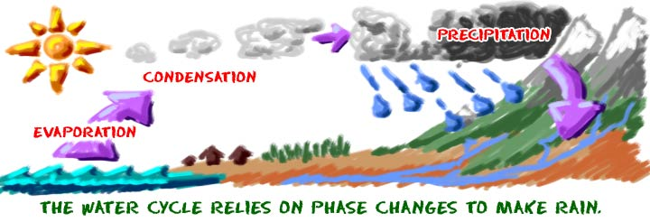 The water cycle depends on phase changes to make rain.